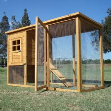 construire un poulailler tapes et conseils. Black Bedroom Furniture Sets. Home Design Ideas